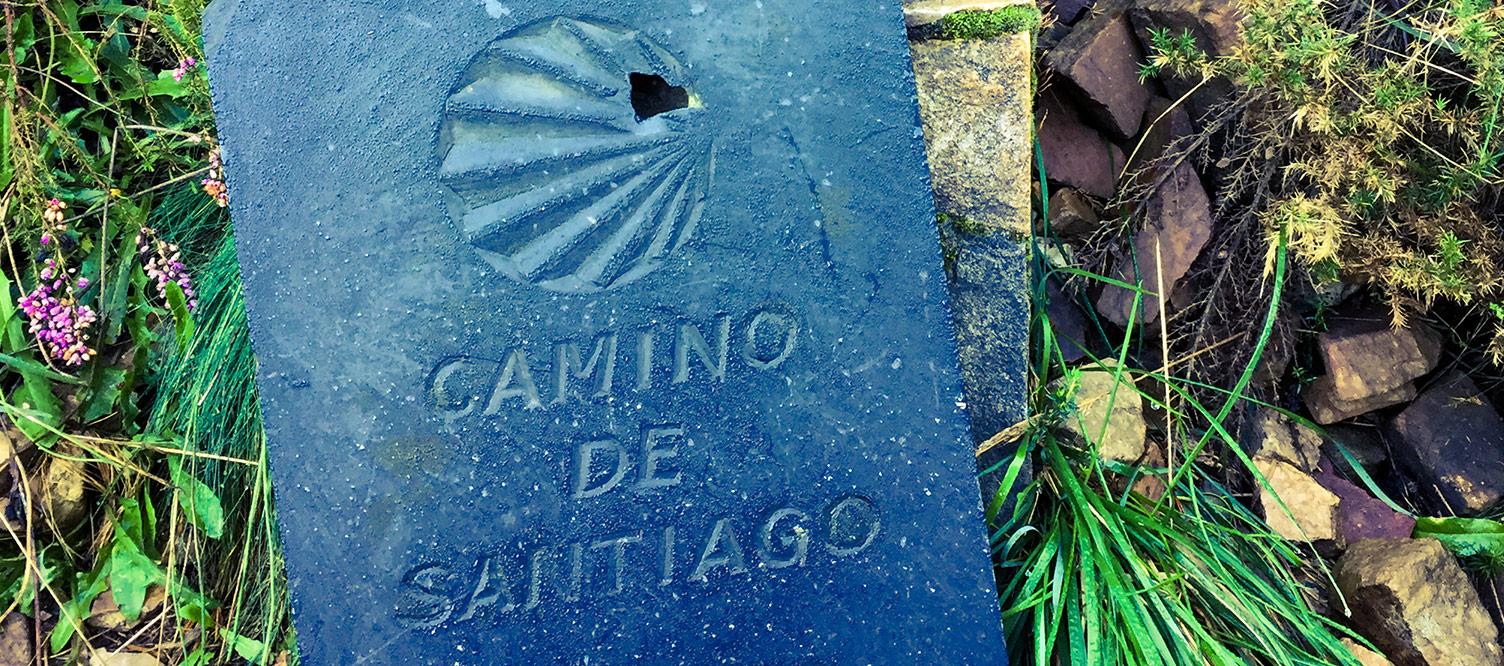 El Camino de Santiago: Camino Primitivo.