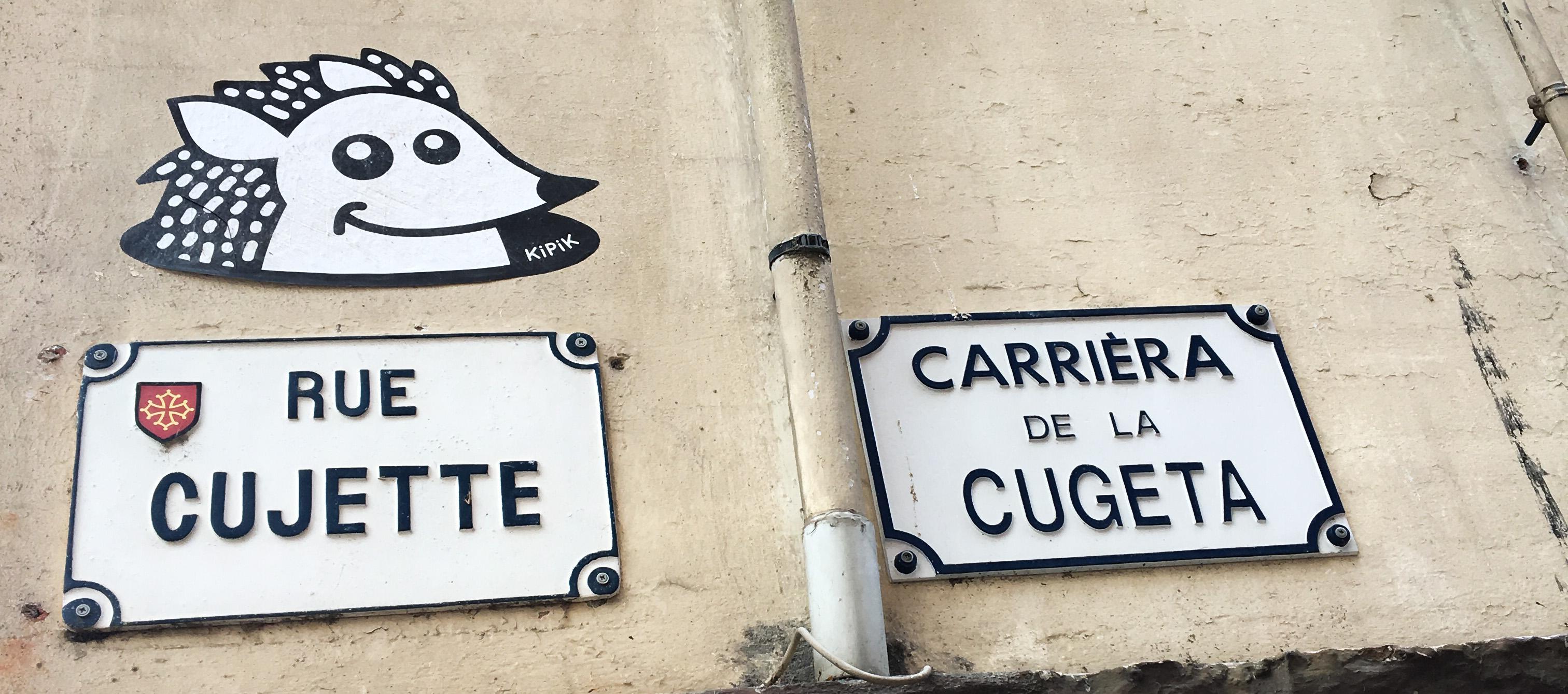 Un poquito más de Francia: Toulouse, esa ciudad que me enamoró, y Carcassonne.